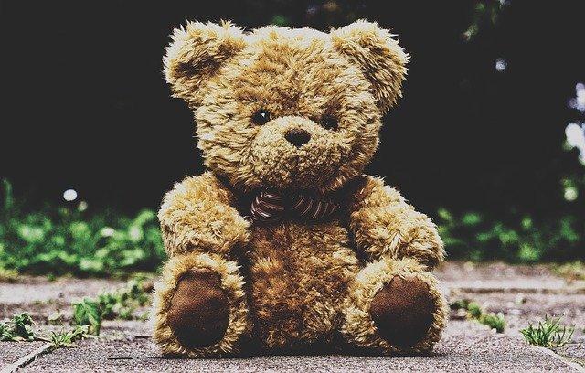 teddy-bear-3599680_640.jpg.e57c91345fa52a020f201bea4b1393f2.jpg